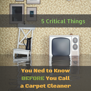 Waterdamage_thingstoknowbeforecallingacarpetcleaner