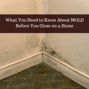 closing on a home with mold