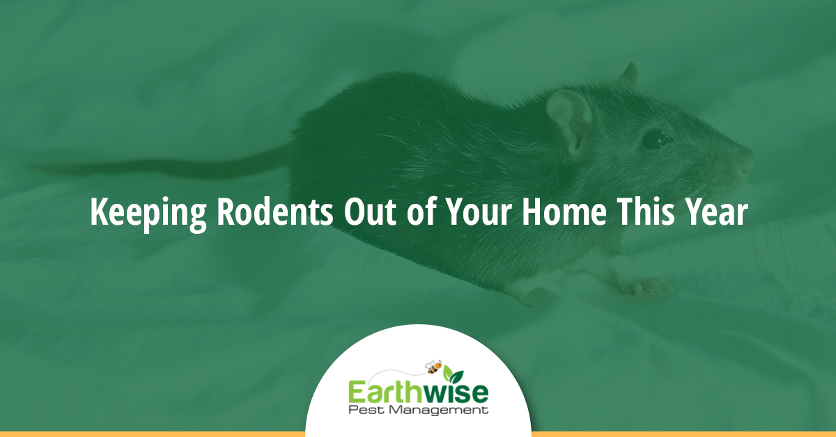 Keeping Rodents Out