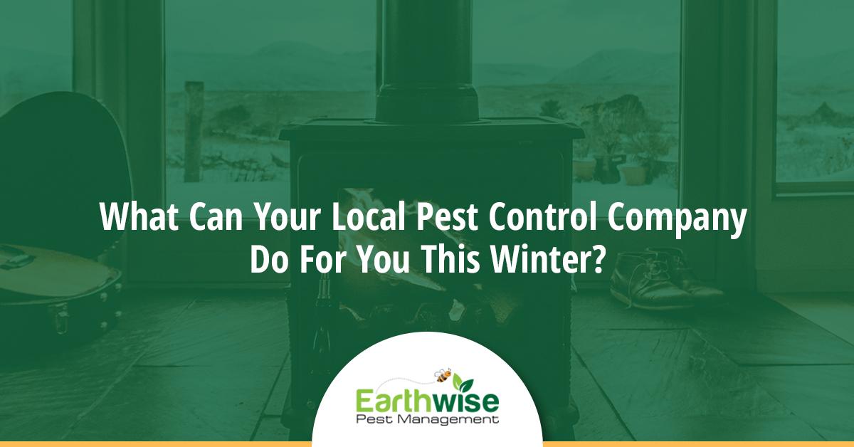 pest control this winter