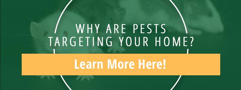 Pest Control Woodland CA
