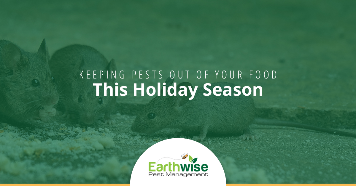 Keeping Pests Out Of Your Food