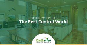 Major Myths of the Pest Control World