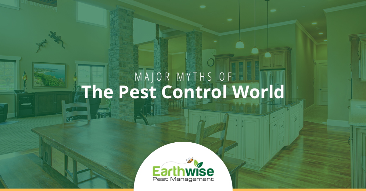 Major Myths of the Pest Control World