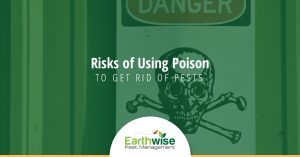 Risks of Using Poison to Get Rid of Pests