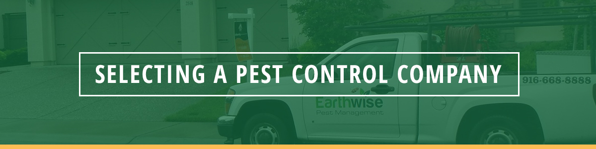Selecting A Pest Control Company