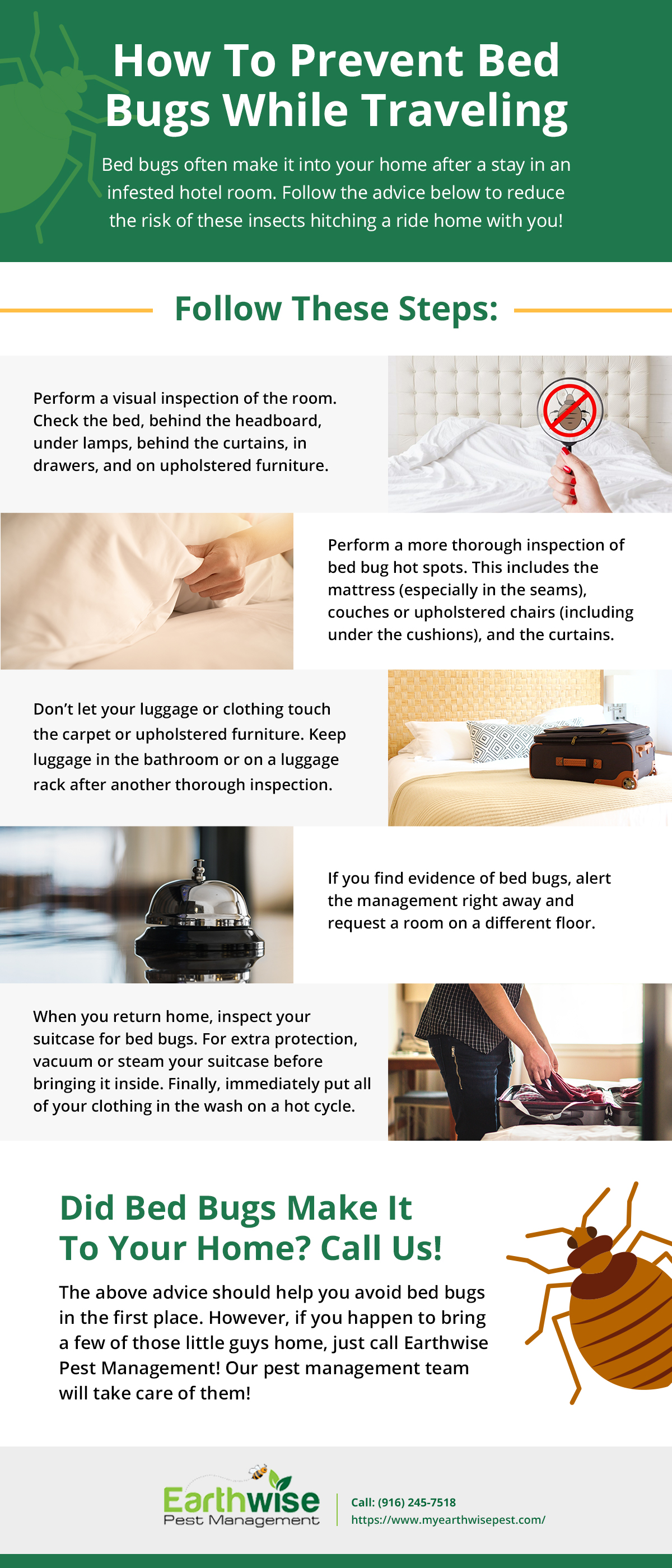 How To Prevent Bed Bugs While Traveling