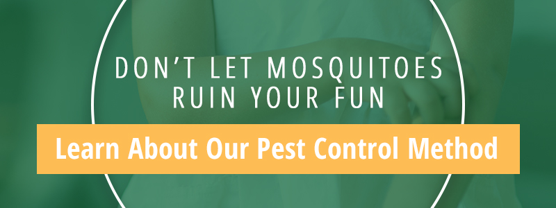 Don't Let Mosquitos Ruin Your Fun