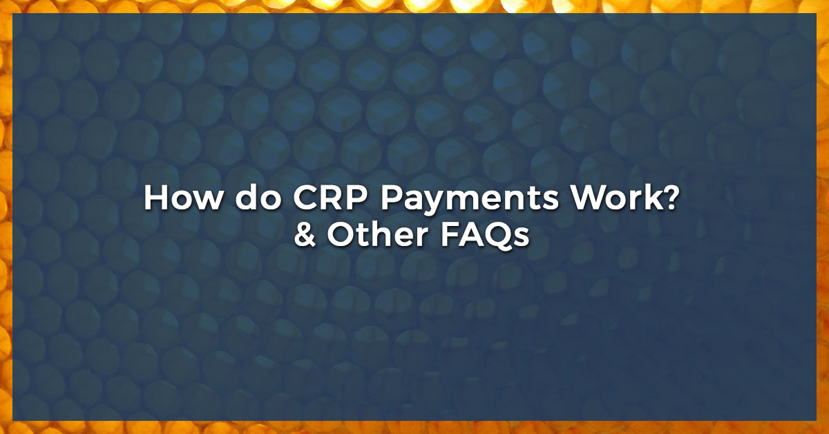 CRP Payments - How Do CRP Payments Work? And Other FAQs