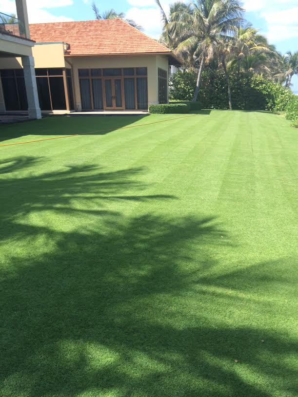 Lawn Spraying Palm Beach
