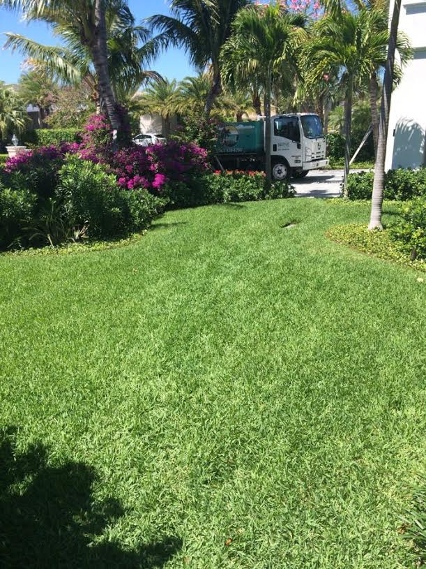 Lawn Fertilizer Boca Raton