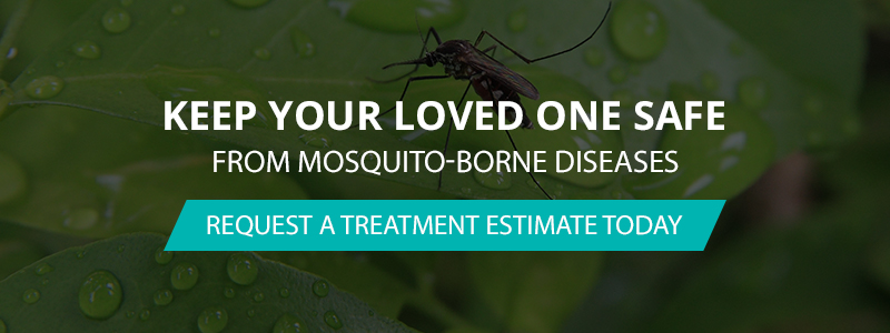 Keep Your Loved Ones Safe From Mosquitos