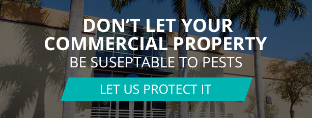 Dont Let Your Commercial Property Be Suseptable To Pests