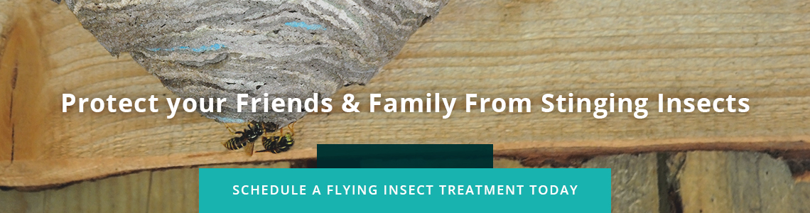 Protect your Friends & Family From Stinging Insects