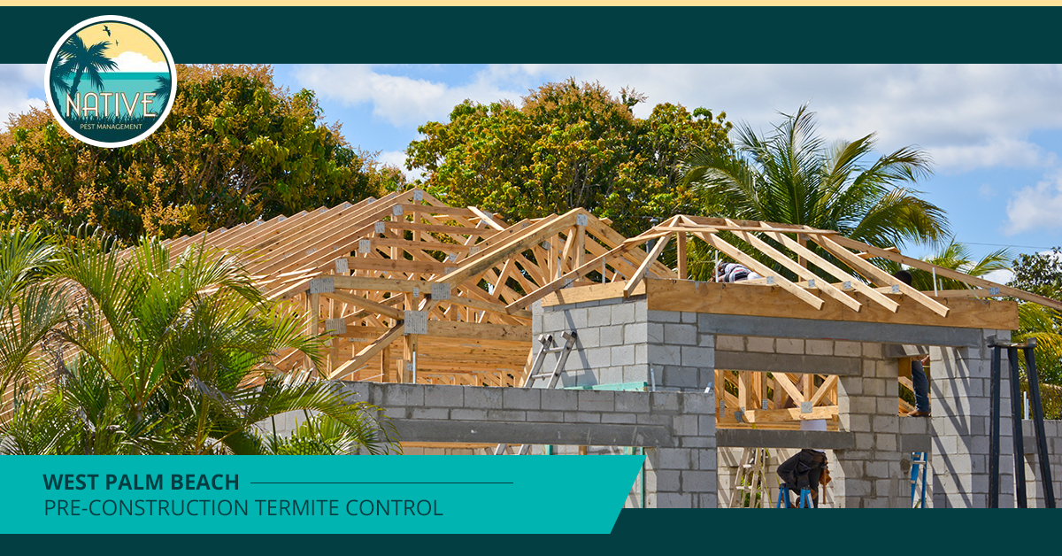 West Palm Beach Pre-Construction Termite Control
