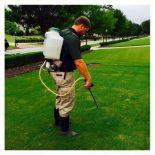 spraying weeds (2)
