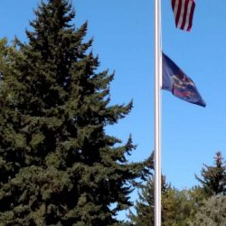 Large flag pole installed next to a pine tree - ND Flag Pole Guy