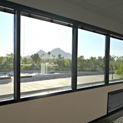 Outside view from office remodel