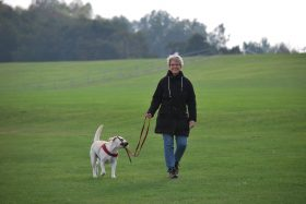 10 tips for fall prevention