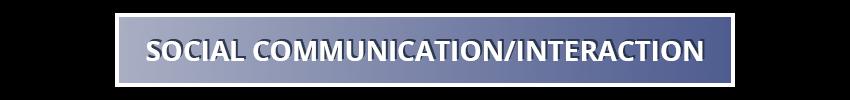 Social Communication/Interaction