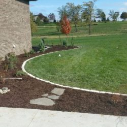 Neat edging along grass and garden area - New Horizon Landscaping