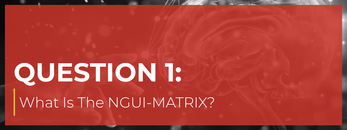 What Is The NGUI-MATRIX