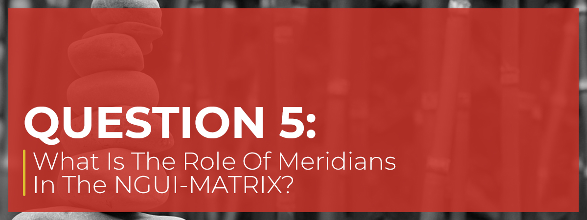 What Is The Role Of Meridians In The NGUI-MATRIX