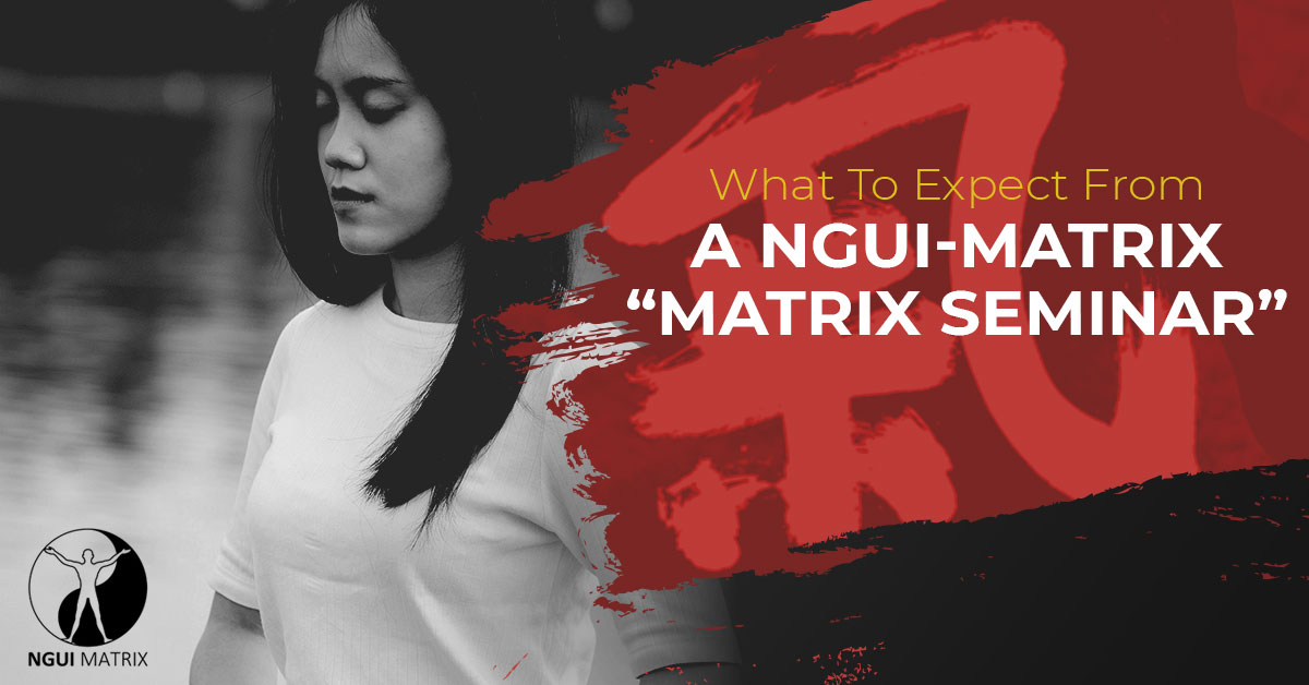 What To Expect From A NGUI-MATRIX Matrix Seminar