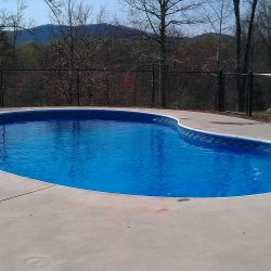 Kidney Shaped Vinyl Pool with Diving Board