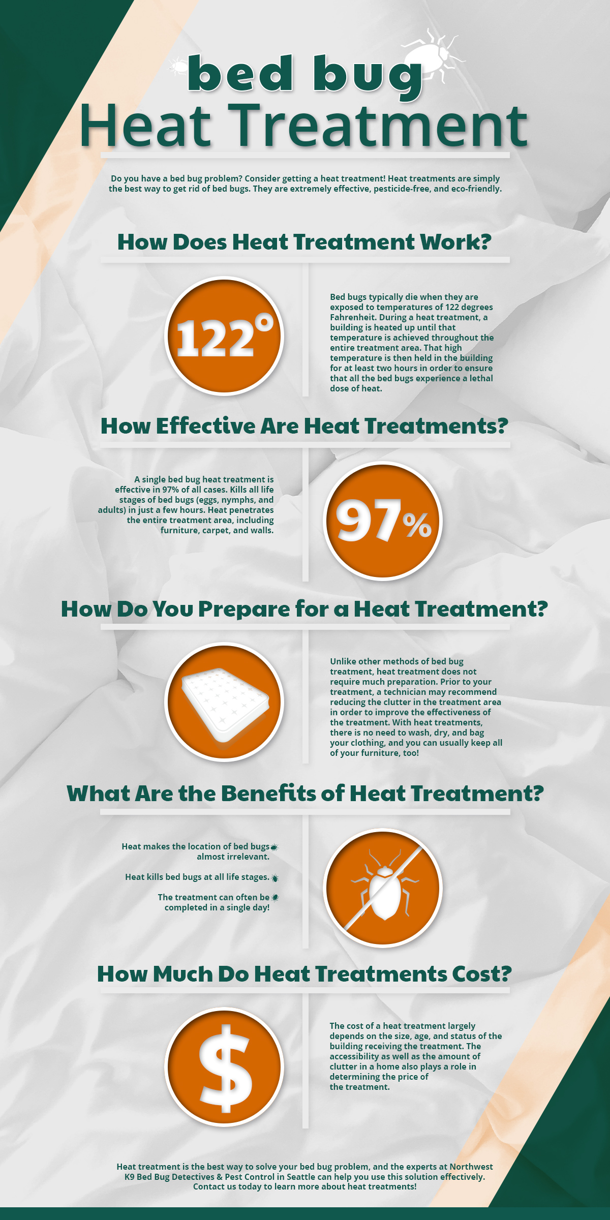 Inforgraphic explaining the basics of bed bug heat treatment