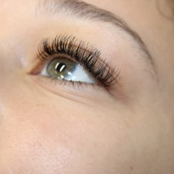 Full eyelash extensions - Oasis By Plush