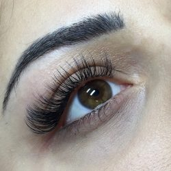 Long eyelashes after extensions - Oasis By Plush