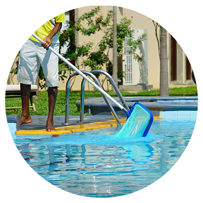 Person cleaning pool with net
