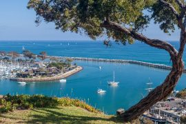 homes for sale dana point