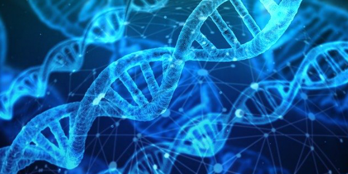 Molecular hydrogen is small enough to get into the cell nucleus and have a protective effect on DNA and activate protective genes