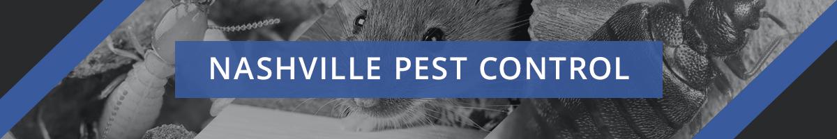 Nashville Pest Control Header