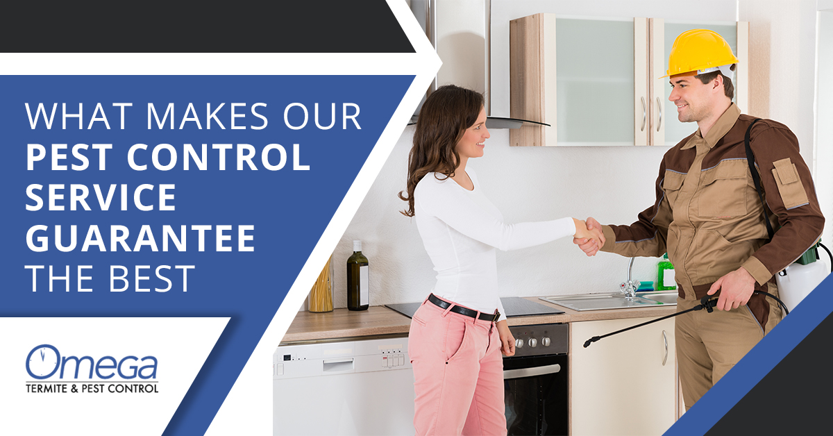 What Makes Our Pest Control Service Guarantee the Best