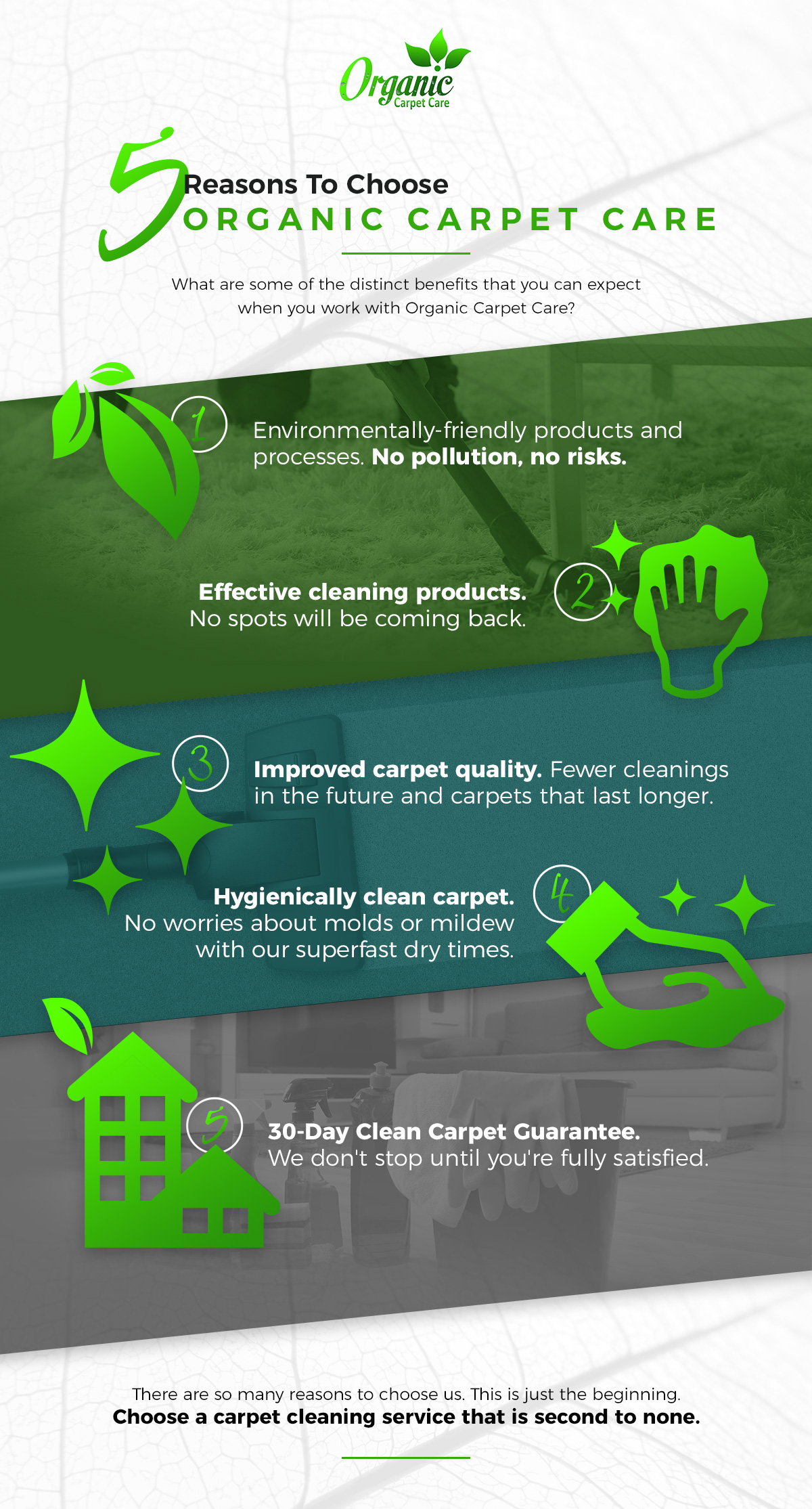 5 Reasons To Choose Organic Carpet Care infographic
