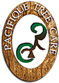 Pacifique Tree Care