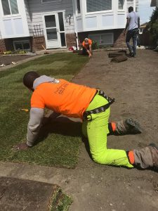 Lawn Installation in Calgary