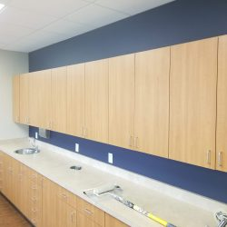 An image of navy blue walls surrounding wood cabinets inside a commercial space that were painted by Painting Plus of Colorado.