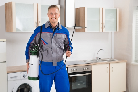 pest control services in Jupiter Florida