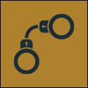 Criminal Law Icon