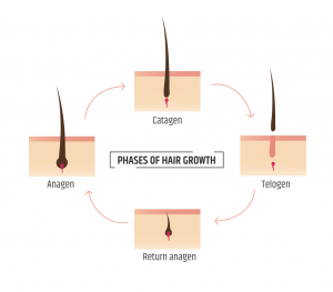 Laser Hair Removal | Permanent Choice