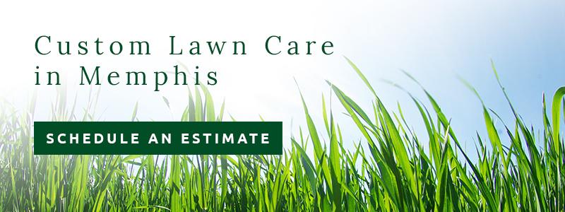 personal lawn care provides lawn care services in Memphis