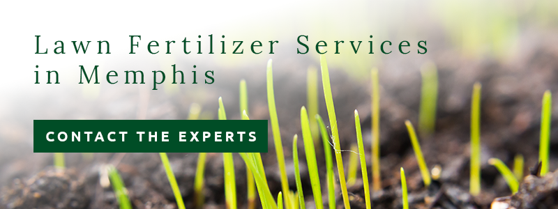 lawn fertilizer services in Memphis from Personal Lawn Care