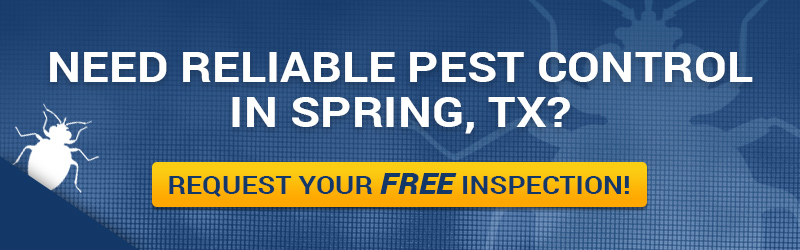 Reliable Pest Control In Spring, TX