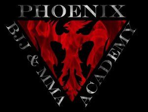 Phoenix BJJ & MMA Academy stressed Phoenix aa image-