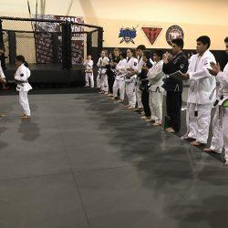 Phoenix Brazilian Jiu Jitsu Stripes