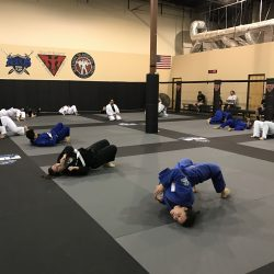 Brazilian Jiu Jitsu Warm Up
